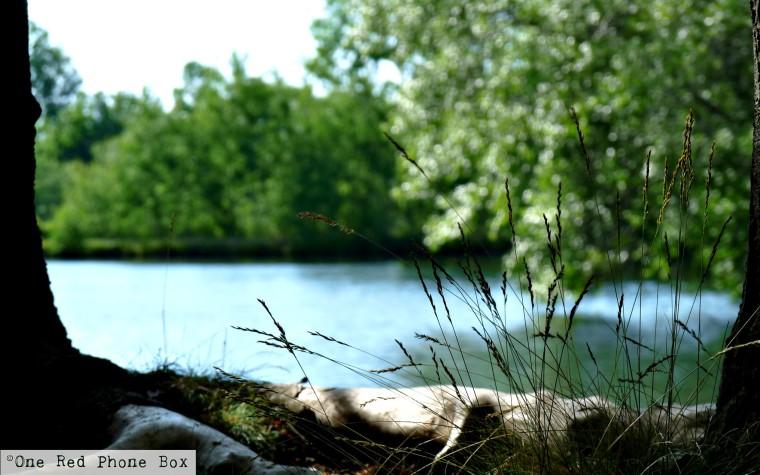 Reservoir4.jpg