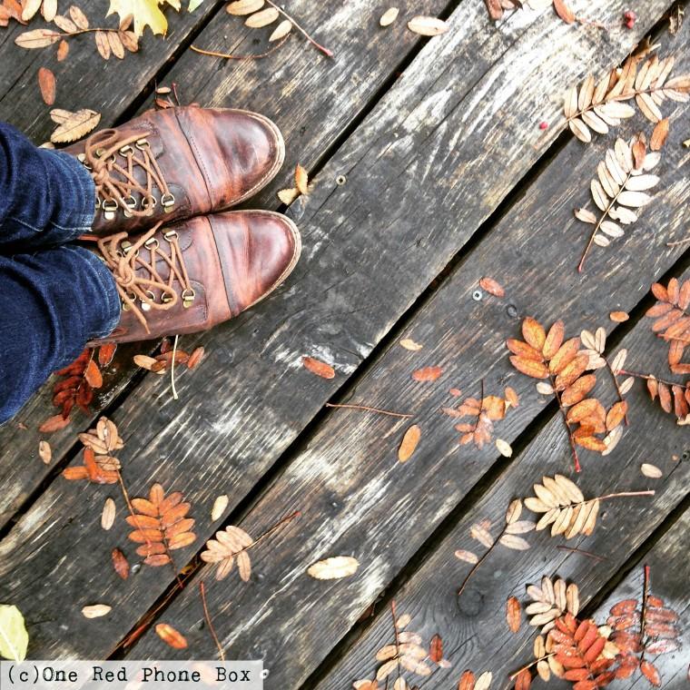 St. John's Leaf Spotting, Newfoundland Canada